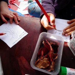Children draw and write about Darkling Beetles