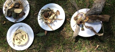 Children's craft made from seeds, leaves and bark