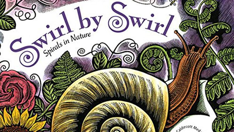 Snail - Swirl by swirl