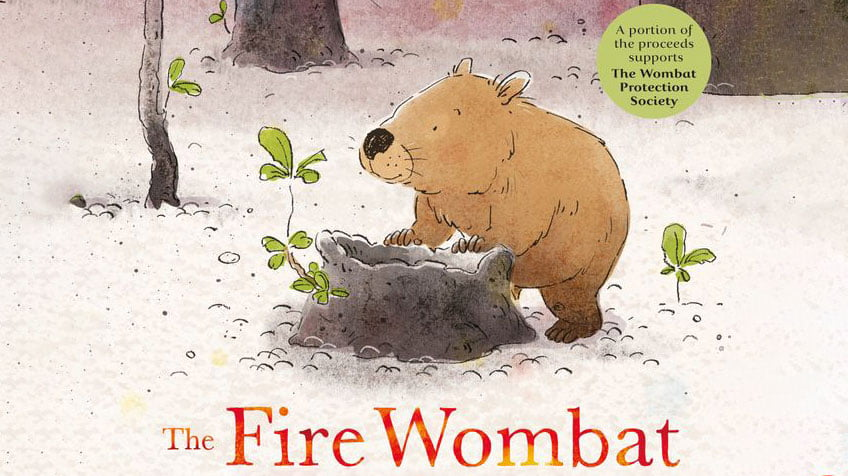 Fire wombat