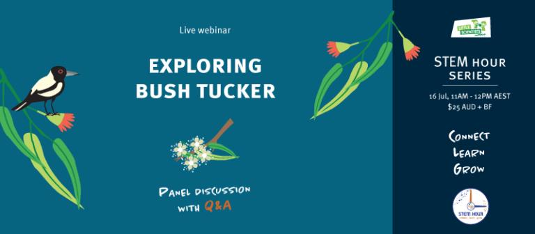 Exploring bush tucker