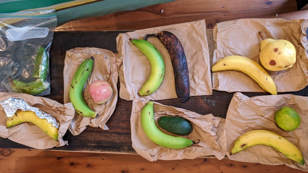 Bananas next to different types of fruit