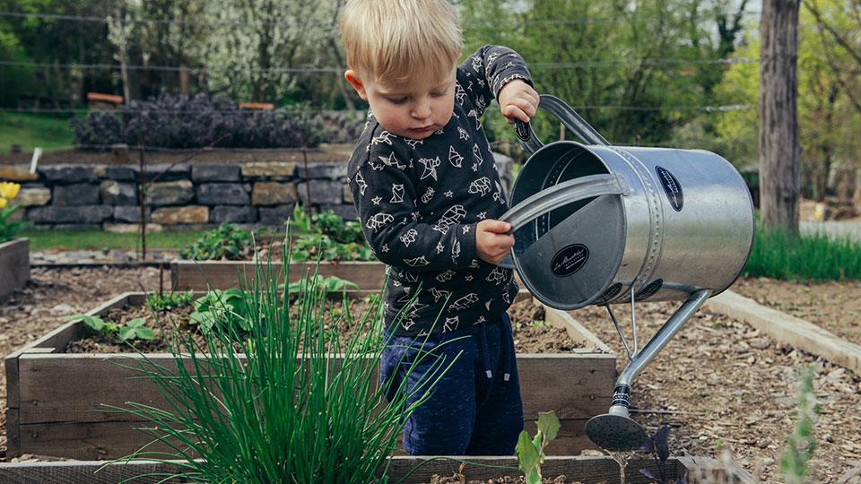 Child watering plants
