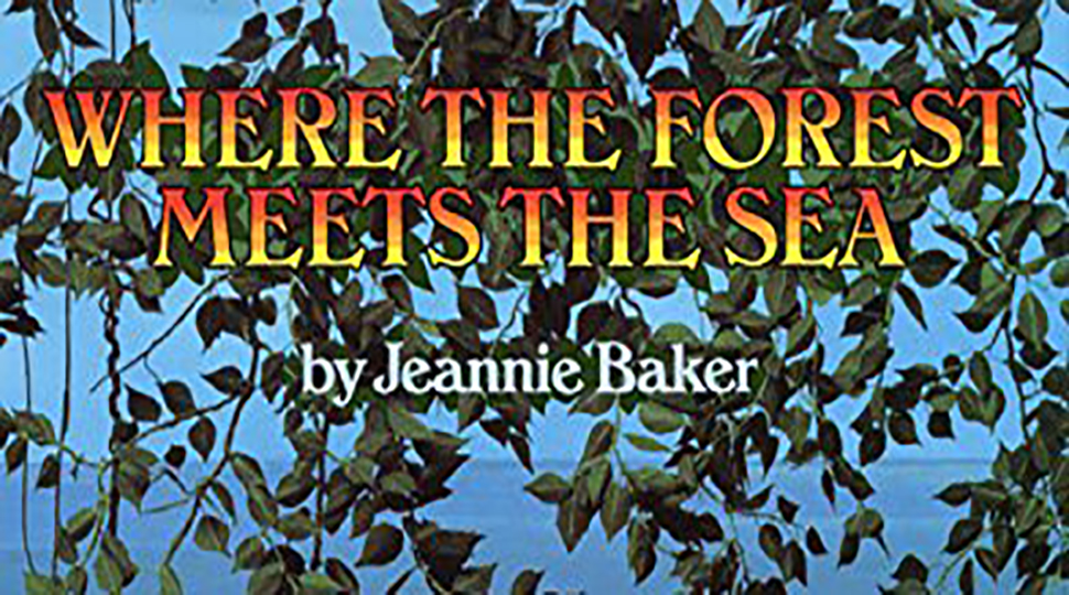 Where the forest meets the sea book cover